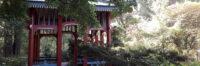 Fr 09:00 | 60 – Qigong – Tamara